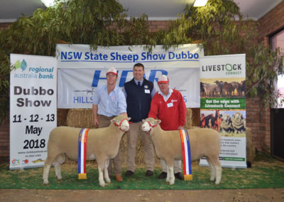 Dubbo Show 2018 Champion Ram and Ewe